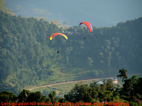 Pokhara is the city of adventure.During poon hill trek we pass through pokhara and could enjoy with paragliding.