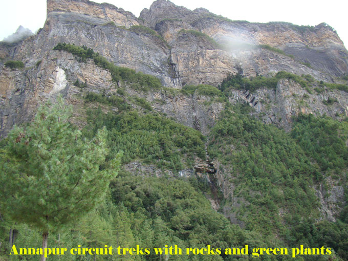 Beautiful rocks with green plants on the way to Annapurna circuit trek